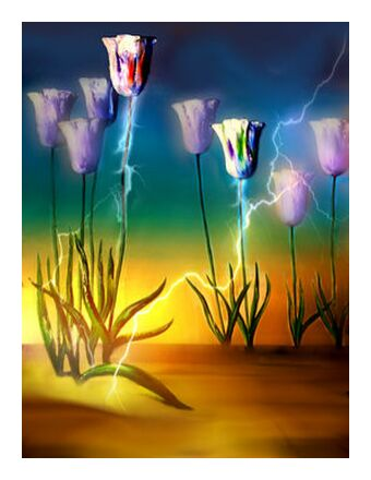 Vital energy from Adam da Silva, Prodi Art, Art photography, Giclée Art print, Prodi Art