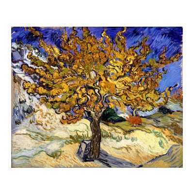 Mulberry Tree at  Saint-Rémy - 1889 VINCENT VAN GOGH from Aux Beaux-Arts, Prodi Art, Art photography, Art print, Standard frame sizes, Prodi Art