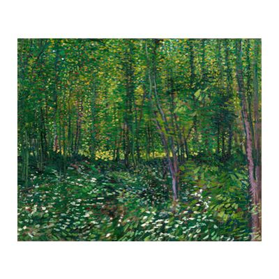 Trees and undergrowth - VINCENT VAN GOGH 1887 from Aux Beaux-Arts, Prodi Art, Art photography, Art print, Standard frame sizes, Prodi Art